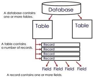 MySQL Database Hierarchy