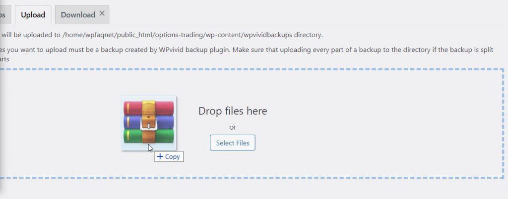 Upload File To Restore